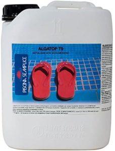Antialghe per piscina: quale comprare ?